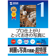 JP-EP1NA4 [インクジェット写真印画紙 超特厚タイプ フォト光沢 A4 20枚]