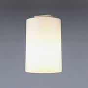 LBEK-11219 [小型シーリングライト 電球形蛍光灯 電球色 A15×1灯]