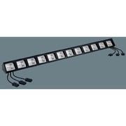 NQ32064 [舞台演出用 フットライト・ミニハロゲンタイプ 85W・65W×12灯用・上手電源タイプ・3回路用]