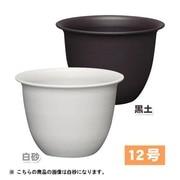 12号WH 和彩中鉢