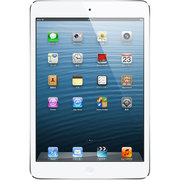 iPad mini Wi-Fi 32GB &amp; [MD532J/A]