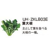 UH-ZKLB03E [Green Farm用 水耕栽培種子キット 葉大根]
