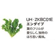 UH-ZKBC01E [Green Farm用 水耕栽培種子キット エンダイブ]