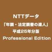 「年調・法定調書の達人」平成25年分版 Professional Edition [Windowsソフト]