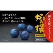 長野県産 極撰 国産大粒ブルーベリー