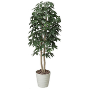170A300-26 [インテリアグリーン 人工観葉植物 光触媒 パキラツリー 1.6m]