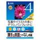 サンワサプライ インクジェット用両面印刷紙A4(薄手) タイプ JP-ERV4NA4N-100 1セット(2冊)