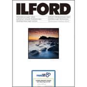 432212 [ILFORD STUDIO Satin 250gsm 329×483mm A3+サイズ 50枚]
