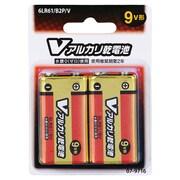6LR61/B2P/V [アルカリ乾電池 Vシリーズ 9V形 2本パック]