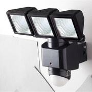 DLS-3T300 [ソーラーセンサーライト 3灯式 LED 1.0W]