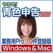 やるぞ!青色申告2017 業務用Pro 10件登録版 for Hybrid [Windows/Mac]