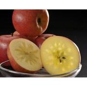 青森県産 究極の蜜入りりんご「こみつ」 [6~12玉(約2kg)]