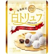 白トリュフチョコレート 60g