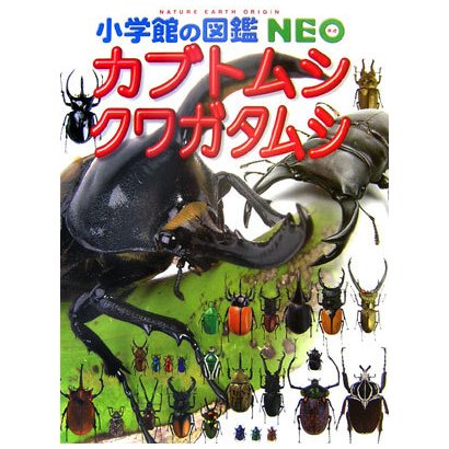 カブトムシ・クワガタムシ(小学館の図鑑NEO〈16〉) [図鑑]