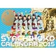 チームしゃちほこ PHOTOカレンダーBOOK 2015