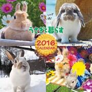 うさぎと暮らすCALENDAR 2016 [単行本]