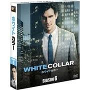 ホワイトカラー ファイナル・シーズン SEASONS コンパクト・ボックス