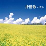 抒情歌 ベスト (BEST SELECT LIBRARY 決定版)