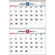 ダブルリング式2ヵ月シンプルカレンダーB3 2018 [単行本]