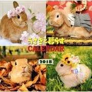 うさぎと暮らすカレンダー 2018 [単行本]