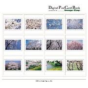 Digital Post Card Book / 桜 [Windows/Mac ダウンロード版]