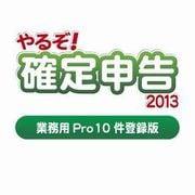 やるぞ!確定申告2013 業務用Pro 10件登録版  for Win [ダウンロードソフトウェア Win専用]