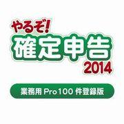 やるぞ!確定申告2014 業務用Pro 100件登録版 for Windows [ダウンロードソフトウェア Windowsソフト]