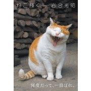 岩合光昭写真集 ねこ輝く(辰巳出版ebooks) [電子書籍]