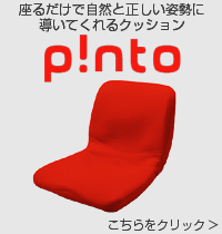 Pinto ピント クッション