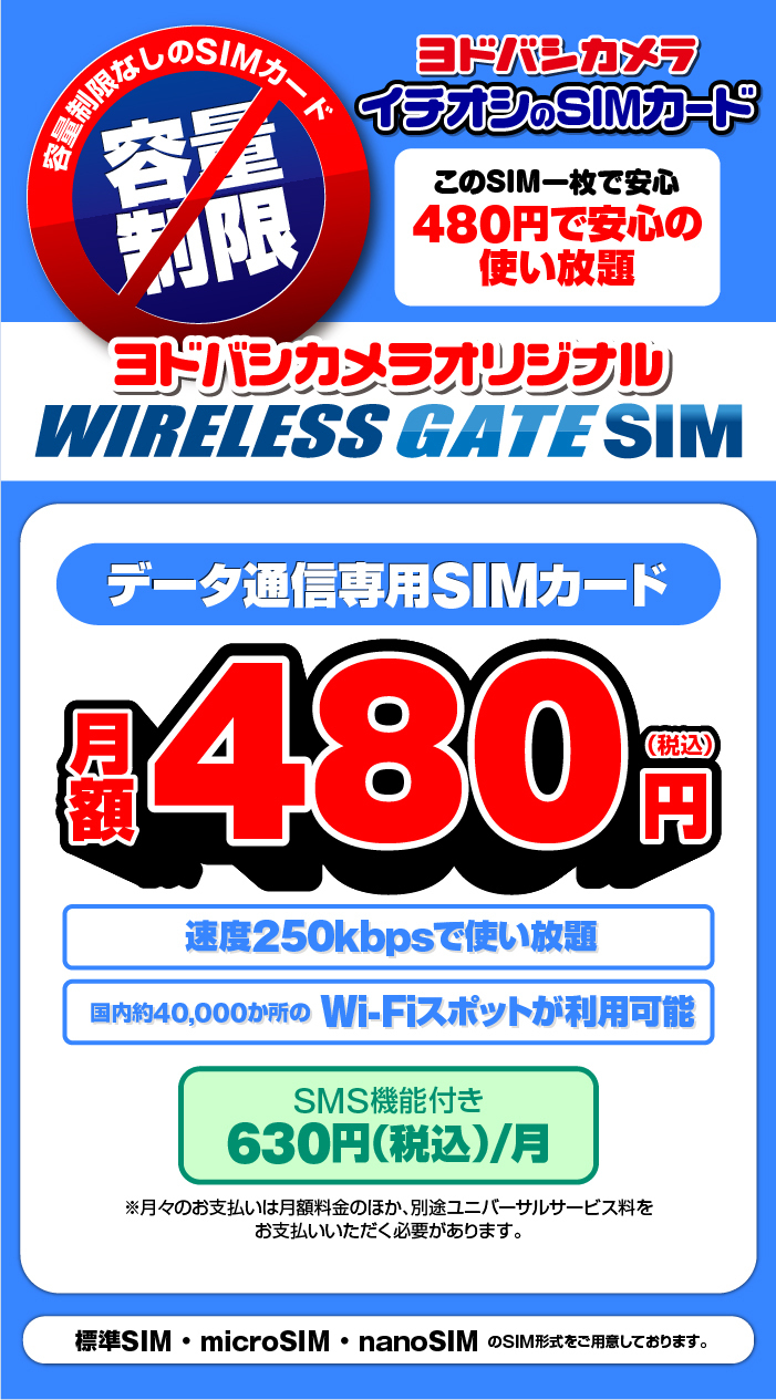 WIRELESS GATE SIM