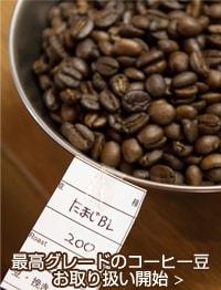 最高グレードのコーヒー豆 お取り扱い開始
