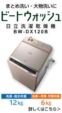BW-DX120B W [