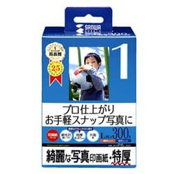 サンワサプライ インクジェット写真印画紙 特厚 JP-EP6L-300