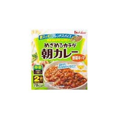 めざめるカラダ朝カレー 野菜キーマ 中辛 2袋入 箱75g×2