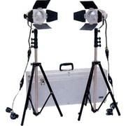 スタジオ&ロケーションライトトロピカルTL-500キット2 [スタジオ&ロケーションライトトロピカルTL-500キット2]