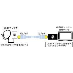 VX-CS110 CS/BSアンテナコード 1m