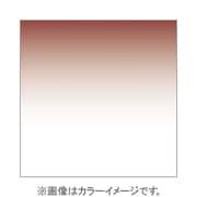 P125L [Pシリーズ ハーフグラデーションフィルター タバコ2ライト 001631]