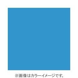 X021 [X-PROシリーズ 全面カラーフィルター ブルー80B 500165]