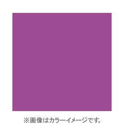 X036 [X-PROシリーズ 色補 色補正フィルター FL-W 500288]