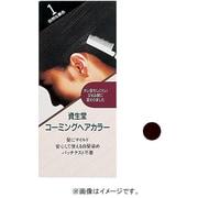 資生堂 コーミングヘアカラーa 2 自然な褐色 [ヘアカラー]