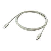 AU2-10 [USB2.0対応ケーブル アイボリー 1m]