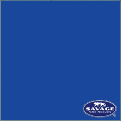 バックグラウンドペーパー [No.58 スタジオブルー 2.72×11m]
