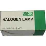 ハロゲン120V-250W [白熱電球 ハロゲンランプ E11口金 120V 250W クリア]
