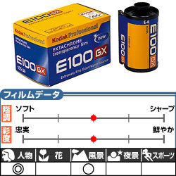 エクタクロームE100GX 135-36枚撮 3本パック