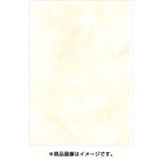 B5-A-05 [新アトモス クチナシ B5]