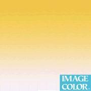イメージカラー M-12 グラデーションペーパー レモンイエロー 80×110cm