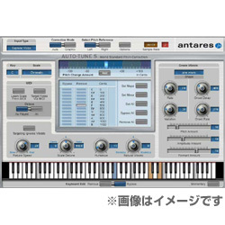 Auto-Tune 5 TDM版 iLok付 [ピッチ補正プラグイン]
