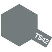 85042 [タミヤカラースプレー TS-42 ライトガンメタル]