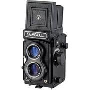 Seagull4B-1