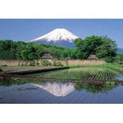 ジグソー RS-32-108 忍野村から富士山 300ピース [ジグソーパズル]